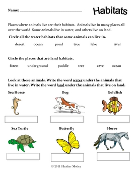 science animals of land and water habitats by mrs motley solteacher. Black Bedroom Furniture Sets. Home Design Ideas