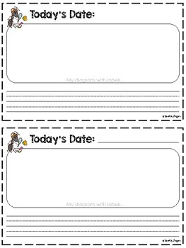 Science- Ant Observation Journal