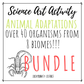 Science + Art Activity BUNDLE: Structure and Function {Animal Adaptations}