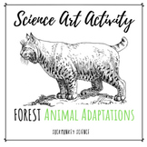 Science + Art Activity: Structure and Function. {Forest Animal Adaptations}