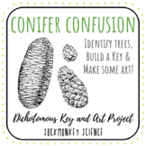 Dichotomous Key Worksheets: Lab Research Station, Science Art & Key Creation