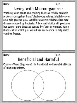 Science Beneficial and Harmful Microorganisms Morning Work/ Activities/ Prompts