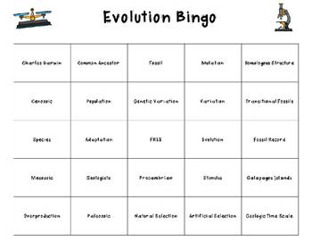 Science Bingo: Evolution