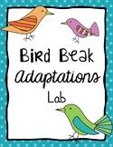 Science - Bird Beaks Adaptations Lab