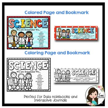 Science Bulletin Board Header (Primary Colors)