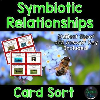 Science Card Sort Bundle (Part 2) - Includes 10 Complete Sets