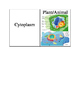 Science Cell Structure Flash Cards