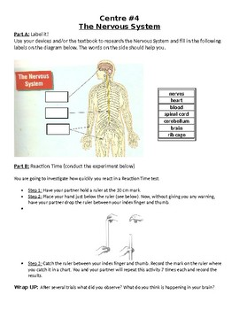 Human Body Systems Centres