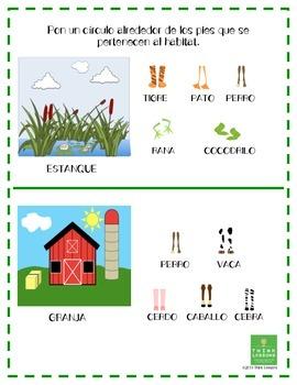 Science - Characteristics and Habitat - All Kinds of Feet - English Spanish