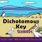 Science: Classifying Birds Dichotomous Key of Seabirds wit