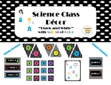 "Science Classroom Decor Bundle ""Black & White"" with Color"