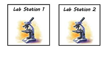 Science Classroom Lab Station Signs plus Eye Wash and Goggles