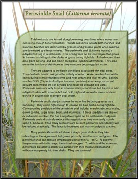 Science Content Poetry - Perwinkle Snail Ecology - Florida Coastal Ecosystems