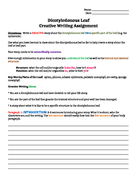Science Creative Writing Task