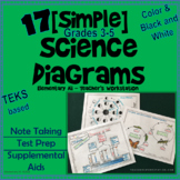 Science Diagrams for Test Prep, Notes, and Supplemental Aids (TEKS)