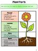 Science Digital Interactive Notebook BUNDLE - Google Drive Resource