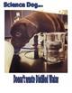 Science Dog Selfies Safety Poster Set