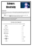 Science 'Electricity Phenomenon' Assessment - New Zealand