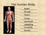 Science / English: Inside our Body PowerPoint