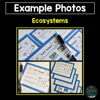 Science Exit Tickets (Exit Slips) Bundle