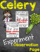 Celery Science Experiment
