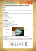 Science Experiment (31 of 50) - Oobleck - Grades 1,2,3