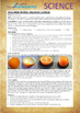Science Experiment (38 of 50) - Orange Candle - GRADES 4,5,6