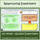 Science Experiment Distance Learning: Regrowing Vegetables