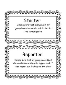 Science Experiment Role Cards