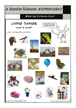 Science Experiment about Living Things - What is alive?