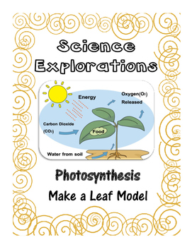 Science Explorations-Make a Photosynthesis Leaf Model