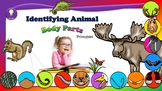 Science: Exploring Animal Body Parts (Color and B&W) Cut a