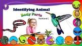 Science: Exploring Animal Body Parts Flashcards I