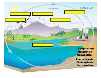 Science FCAT 2.0 Manipulatives