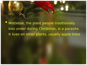 Science Facts for Christmas