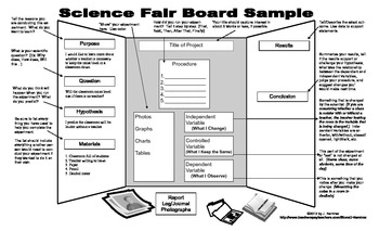 Science Fair Display Board Templates Maggilocustdesignco - Layout of a science fair board
