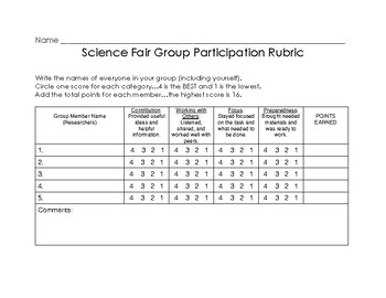 Science Fair Group Participation Rubric