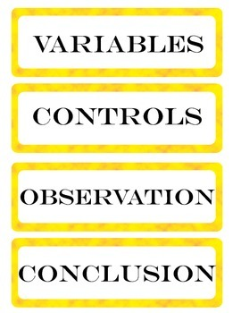 Science Fair Board Headers -Sophisticated Version