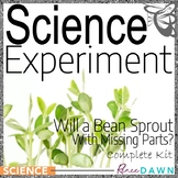Science Fair Project - Science Experiment - Will a Bean Sprout?
