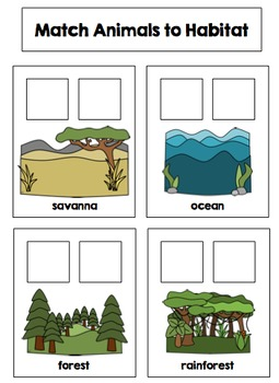 Science File Folder Activities for Preschool and Kindergarten