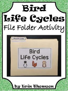 Science File Folder Activity ~ Bird Life Cycles