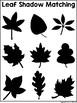 Science File Folder Activity ~ Leaf Matching