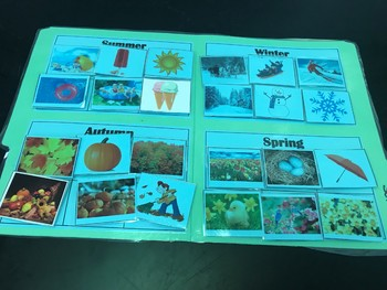 Science File Folder- Four Seasons Sort
