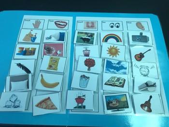 Science File Folder Game- Five Senses Sort