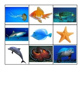 Science File Folder- Land or Ocean Animal Sort