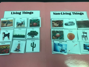 Science File Folder- Living Or Nonliving Sort