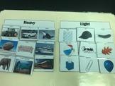 Science File Folders- Heavy or Light Sort