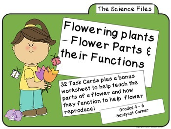 Science Files - Flowering Plants - Flower Parts and their