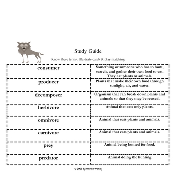 Science: Food Chain Assessment