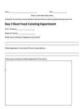 Science-Food Coloring Experiment Observation Sheet